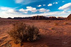 Fotoexpedice Jordánsko WadiRum