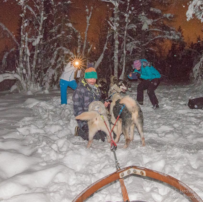Výlet se psím spřežením