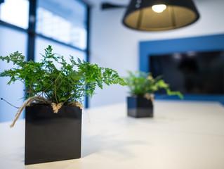 Fotografování firemních prostor - školící středisko BMW