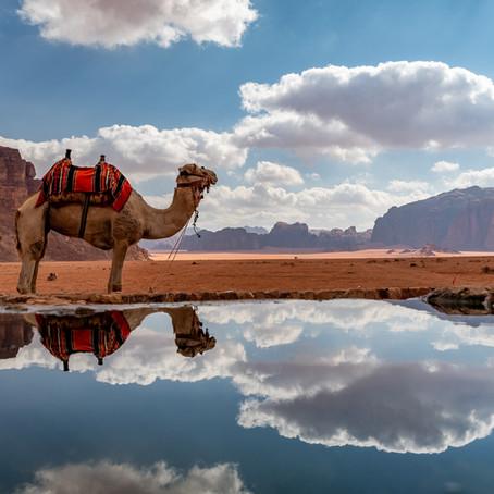 Jordánsko - země písku, skal, velboudů a památek