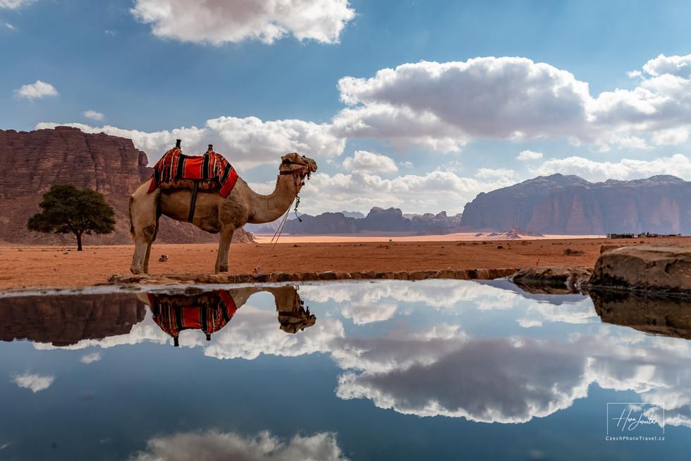 Fotoexpedice Jordánsko Petra Wadi Rum
