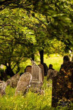 Židovský hřbitov - Mikulov