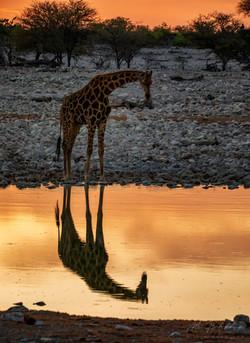 Fotoexpedice - zájezd Namíbie 7606