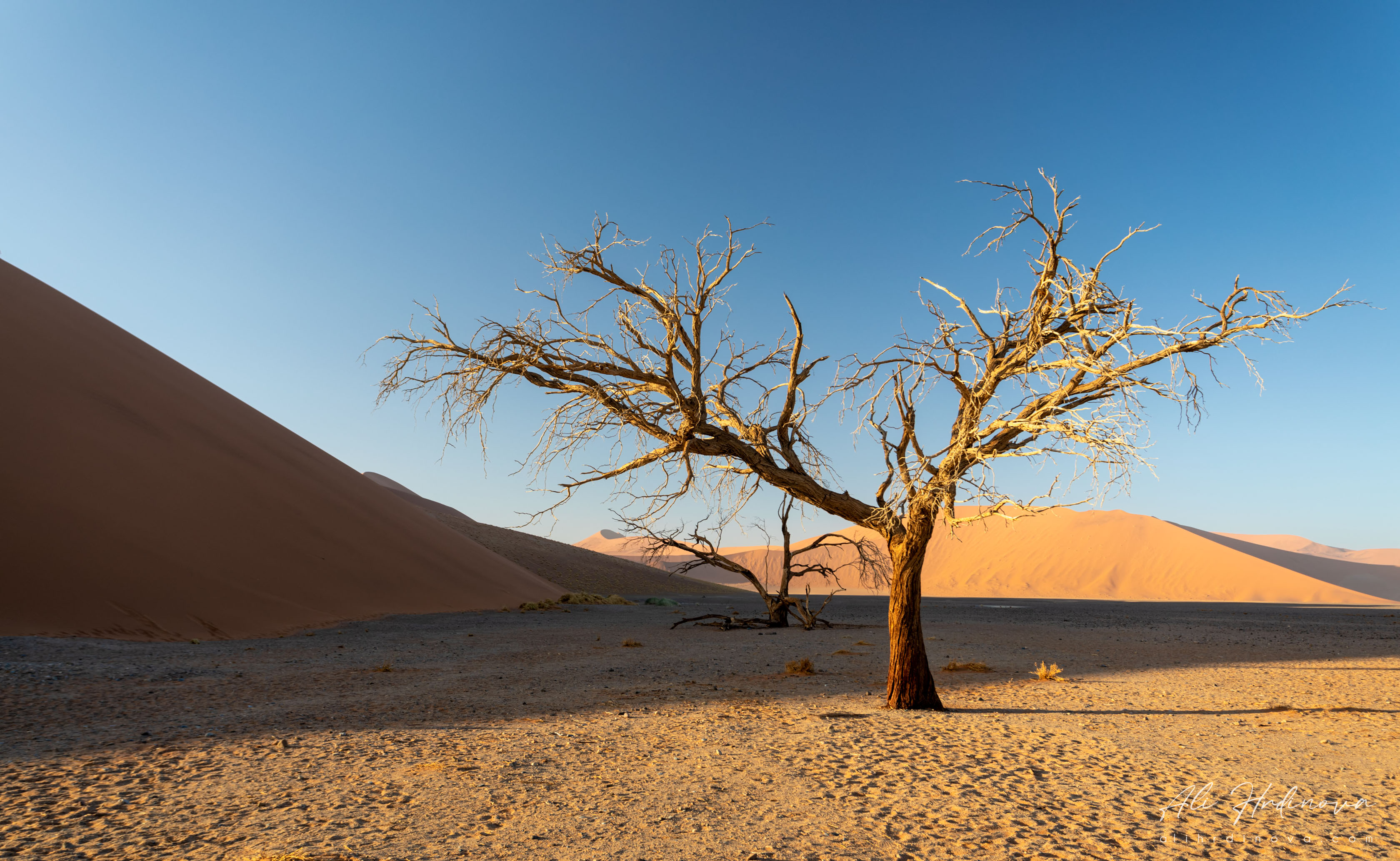 Fotoexpedice - zájezd Namíbie CPT_9352
