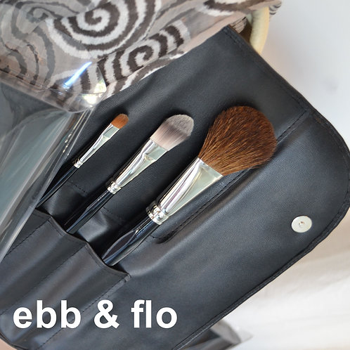 Professional Series Brushes