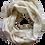 Thumbnail: Linen Cream Scarf
