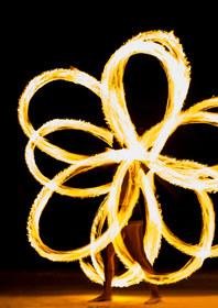 flowerantispin.jpg