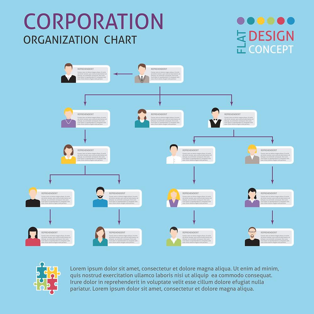 Organigramme entreprise