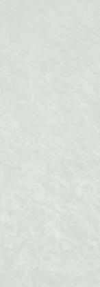 0741 birch grey sx