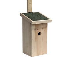 nids pour oiseaux.jpg