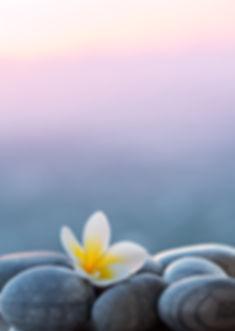 massages au cabinet ayurvedique à noville