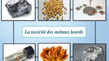 Cure détox contre les métaux lourds ?