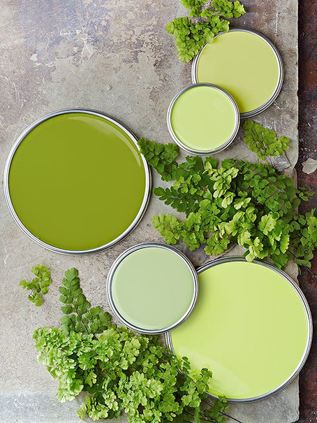 16 Best Inspirations for Involving Green in your Everyday Life !