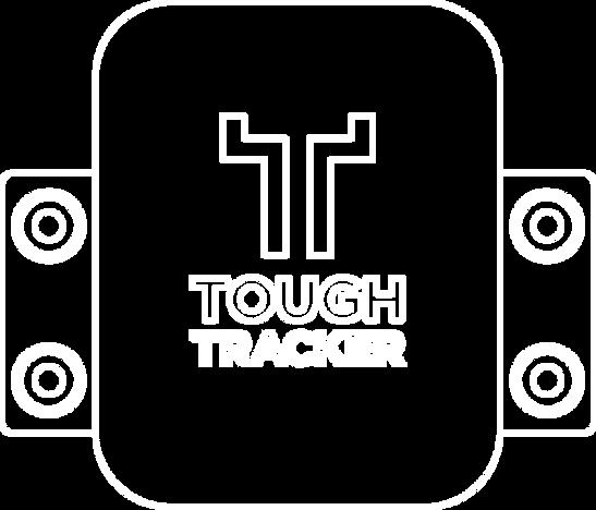 TT-diagram-011.png