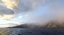 Maui Rain.jpg