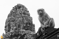 Angkor-4027.jpg