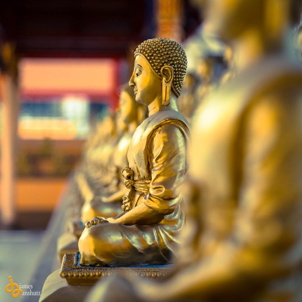 buddha-9253-2.jpg