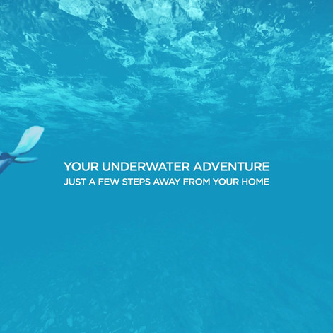 Snorkeling Zone.mp4