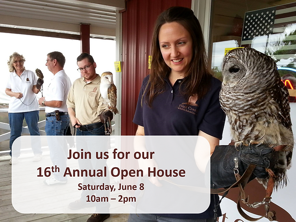 Barn Owl Open House 2019.png