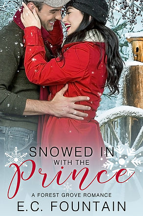 SnowedinwiththePrince_ebook_Final_small.