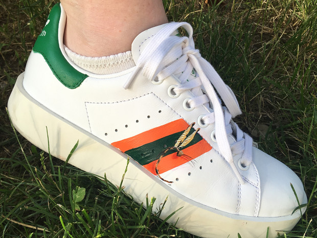 Stan Smith sneakers hand painted with stripes and a dragonfly