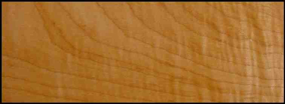 Example of Hard Maple, Curly for hardwood flooring, millwork, stairs, cabinets, doors and more available from Prodigy Hardwood Interiors.