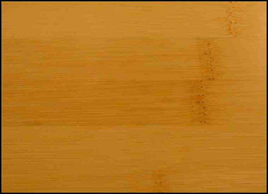 Example of Bamboo for hardwood flooring, millwork, stairs, cabinets, doors and more available from Prodigy Hardwood Interiors.