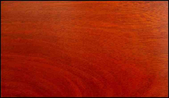 Example of Padauk for hardwood flooring, millwork, stairs, cabinets, doors and more available from Prodigy Hardwood Interiors.