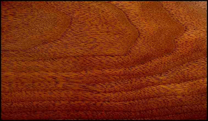 Example of Walnut for hardwood flooring, millwork, stairs, cabinets, doors and more available from Prodigy Hardwood Interiors.