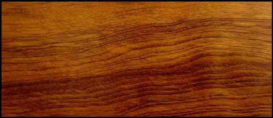 Example of Imbuia for hardwood flooring, millwork, stairs, cabinets, doors and more available from Prodigy Hardwood Interiors.