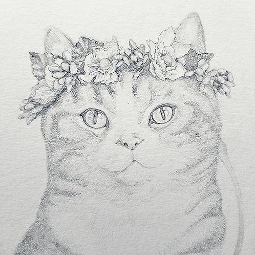 Pet Portrait Drawing- 4 Week Online Beginner Course