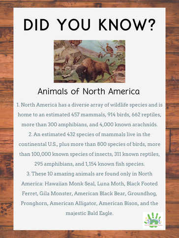 Animals of North America.png
