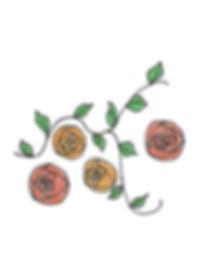Orange roses tidy.jpg