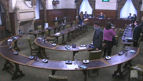 Debate in Westminster Hall, House of Commons: Video Recording