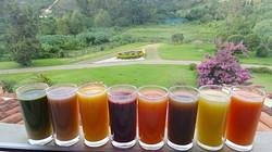 Rainbow Juices AL_edited