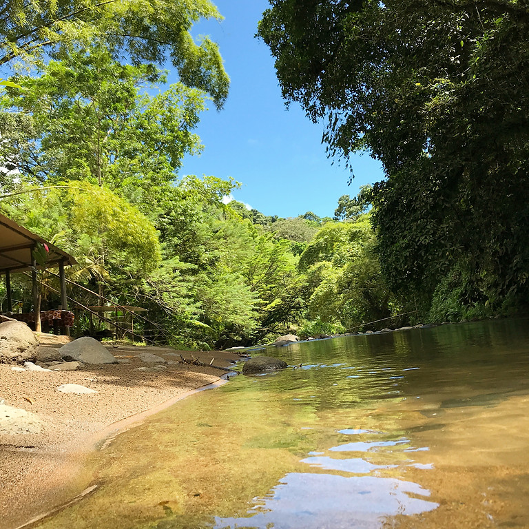 Healing Nature - Martinique