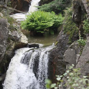 La cascade