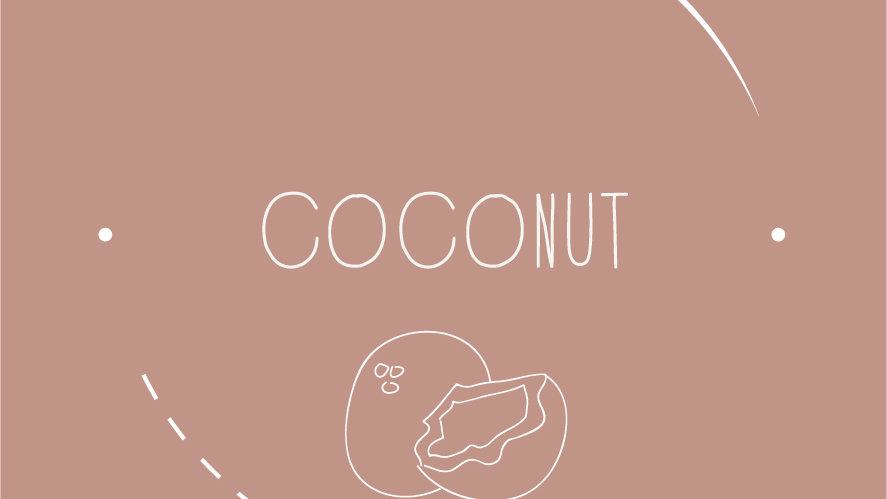Scent of the Month - COCONUT WAX MELT