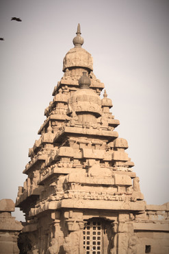 Vimana of Sea Shore Temple - Mamallapuram