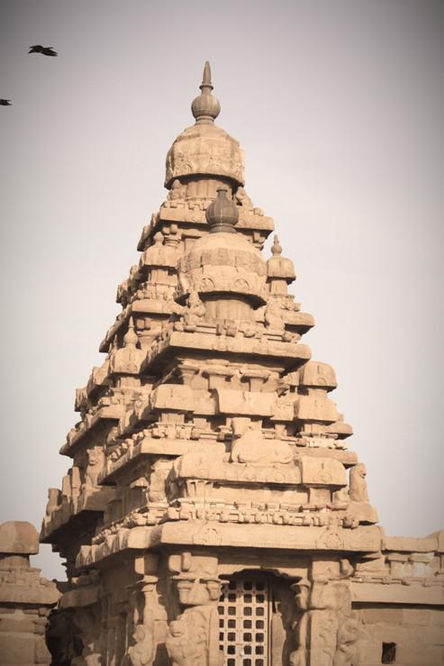 Vimana of Sea Shore Temple - Mamallapuram