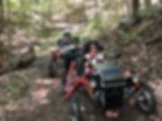 Swincar Rider 2.jpg