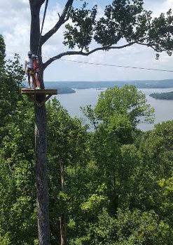 Tree platform at lake guntersville zip lines