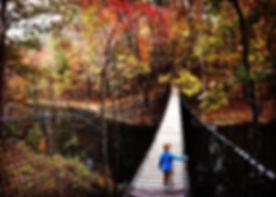 Suspension Bridges and Walking Bridges