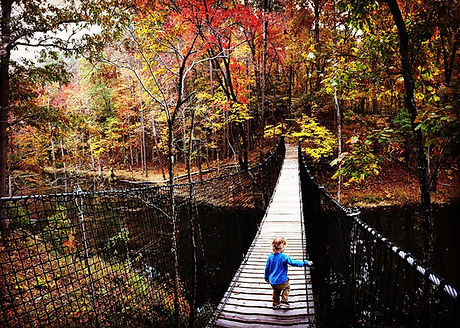 Suspension Bridges and Walking Bridges