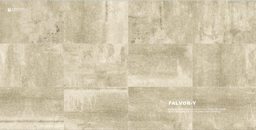 FLAVOR y