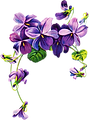 african-flowers-clipart.png