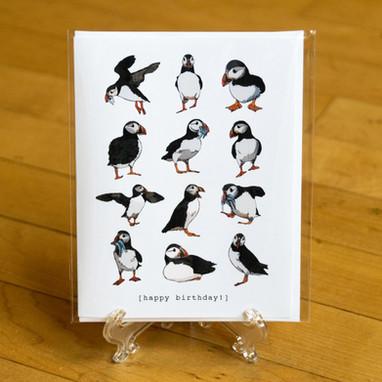 Atlantic Puffins Birthday Card