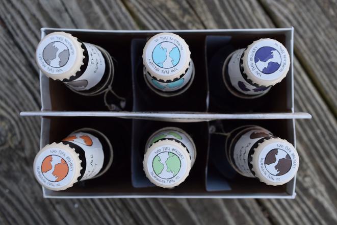 Bottlecap design SNC Class Project, 2015