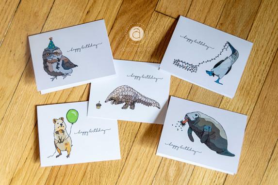 Funky Animal Birthday Card Set: Quokka