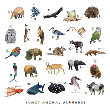 Funky Animal Alphabet